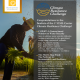 Climate Resilience Challenge finalists