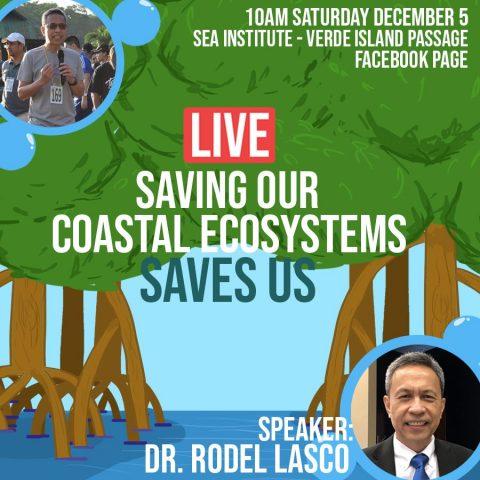 SEA Institute - Saving Our Coastal Ecosystems Saves Us