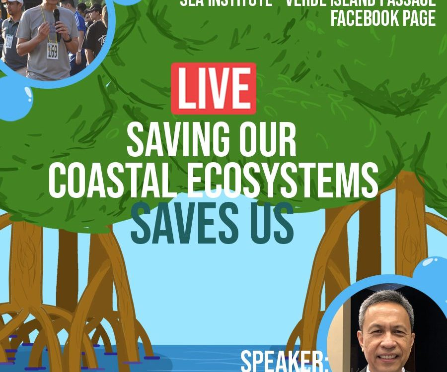 SEA Institute - Saving Our Coastal Ecosystems Saves Us